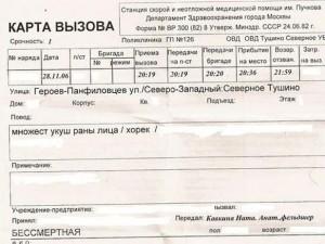 С 2011 года российское здравоохранение переходит на электронные медицинские карты — Минздравсоцразвития РФ
