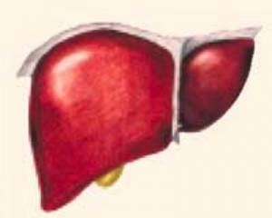 Класификация повреждений печени и способ оценки их тяжести