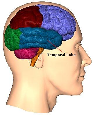 Британские ученые обнаружили в мозге человека зону, которая порождает чувство повышенного беспокойства