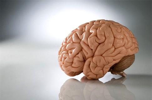 Исследование показало, что эмоциональный стресс может изменять функции мозга