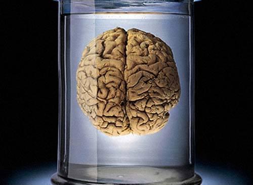 Новая эра в области исследований головного мозга?