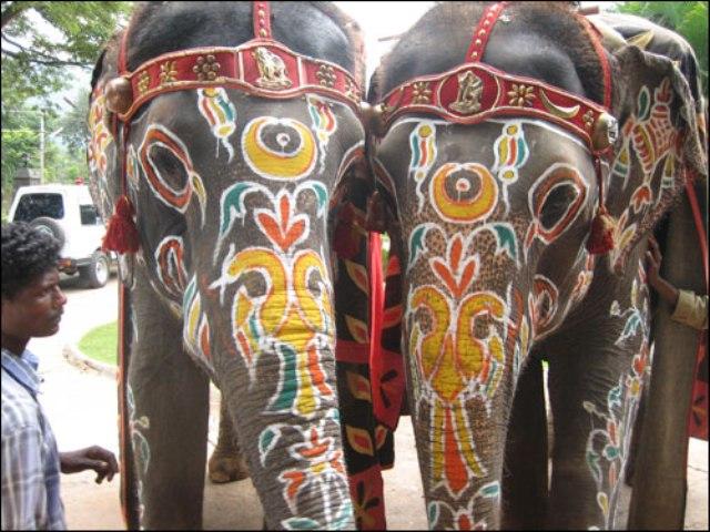 Sanofi–Aventis объявила о планах приобретений в Индии