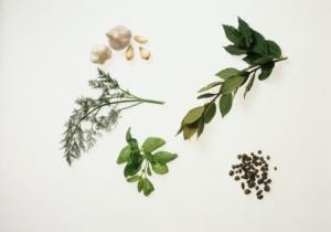 Лечение ревматоидного артрита лекарственными травами