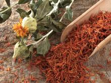 Масло сафлора защитит сердце и сосуды от болезней