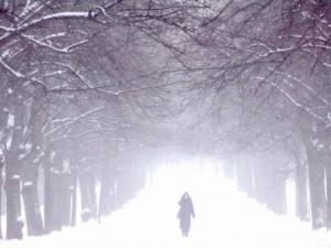 Солнце, дождь и снегопады… Наше сердце им не радо