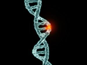 Люди болеют диабетом из-за древней мутации