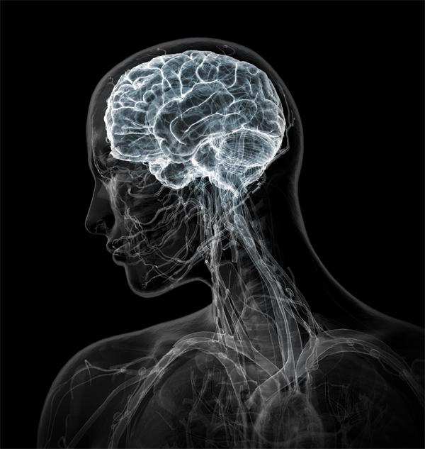 Иркутск 2011: «Нарушение мозгового кровообращения: диагностика, профилактика, лечение»