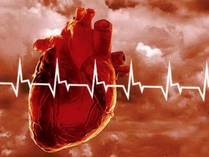Французские и российские кардиологи обменялись опытом