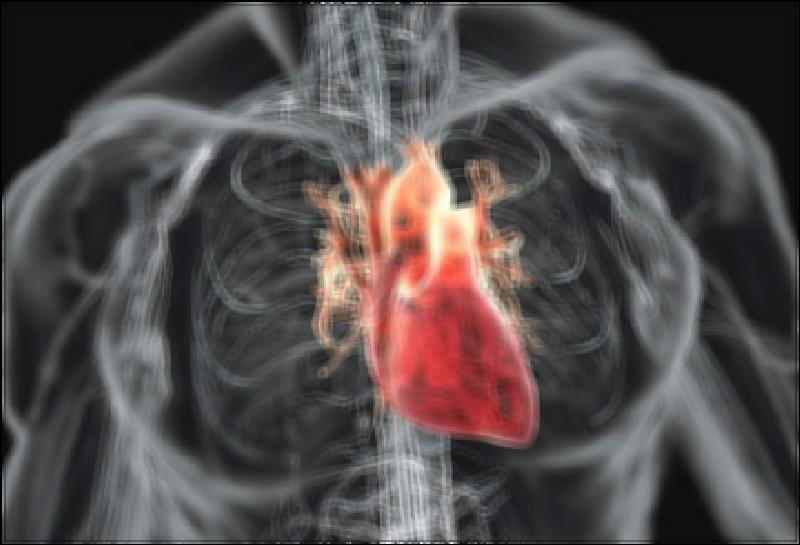 Сердце, как котел kospel ekco — сильное и здоровое.