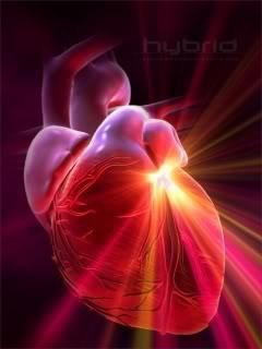 Заболевания сердца. Основные причины возникновения и симптомы