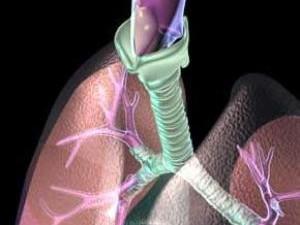 Кадмий – главный виновник лёгочных болезней