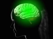 Клетки микроглии — спасительный механизм для мозга