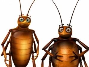 Соседство с тараканами повышает риск астмы