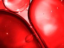 Найден белок, регулирующий кровяное давление