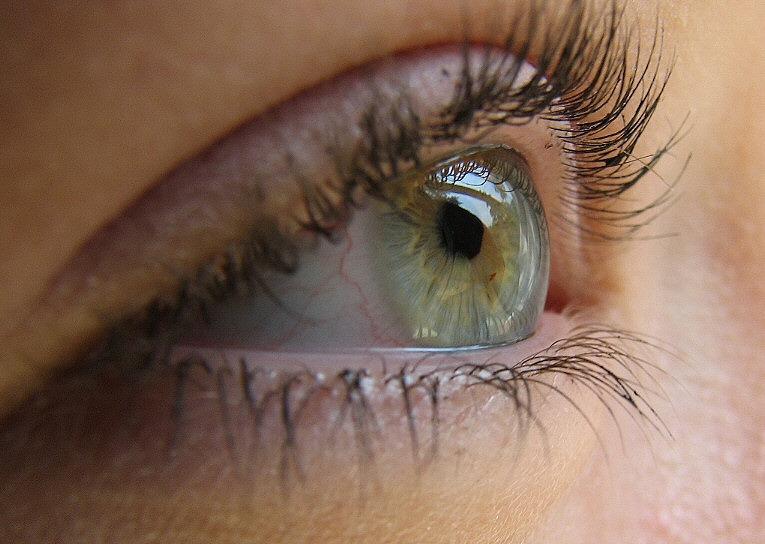 Витамин C для деятельности глаз и мозга