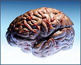 Лекарства от депрессии вызывают инсульт