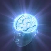 Опиоидный пептид CDB3 – новое слово в борьбе с последствиями черепно-мозговой травмы и инсульта