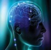Болезнь Альцгеймера связывают с высоким уровнем холестерина