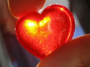 Следить за состоянием сердца будут через Интернет