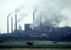 Загрязнение окружающей среды грозит инфарктами и инсультами