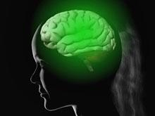 Доказано: мозг контролирует концентрацию сахара в крови