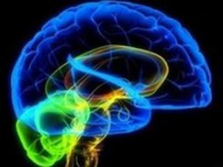 Ученые обнаружили способ стимуляции работы мозга