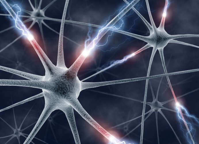 Неврологи называют проблему эпилепсии мультифакторной