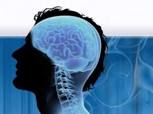 Американские ученые предложили новый способ для оценки нейрохимических процессов, которые происходят в мозге человека