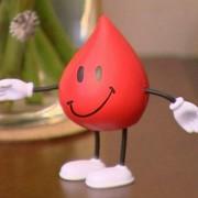 Что думают врачи о компенсациях донорам крови