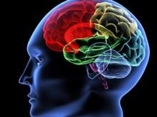 Наше отношение к другому влияет на активность мозга, показало наблюдение