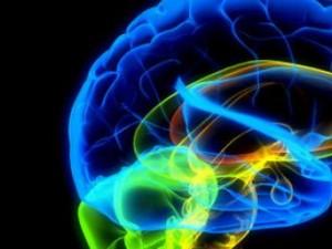 Открытие ученых: человеческий мозг способен к самовосстановлению