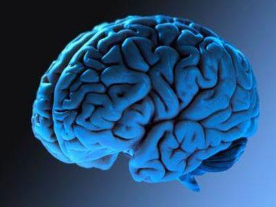 Потребление алкоголя в любом количестве убивает клетки и ткани вашего мозга