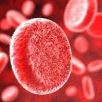 Группа крови человека определяет риск развития болезней сердца