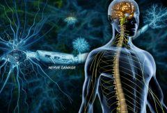 Нанотехнологии излечат рассеянный склероз