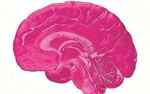 5 необычных способов улучшения работы мозга