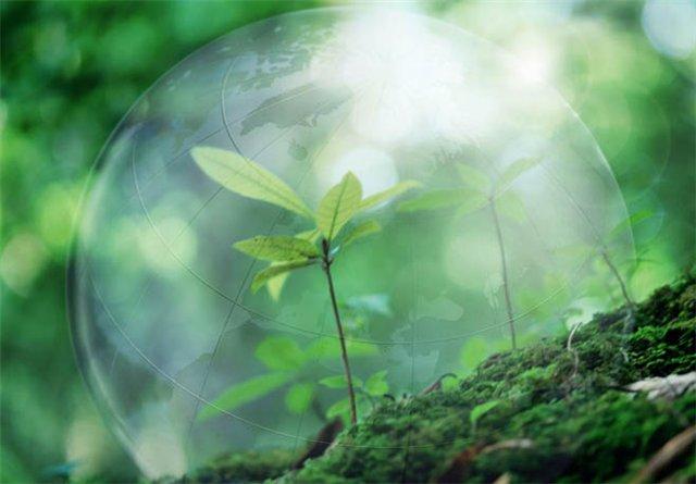 Здоровье человека и экология сегодня