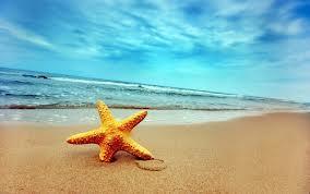 Морской отдых – польза здоровью