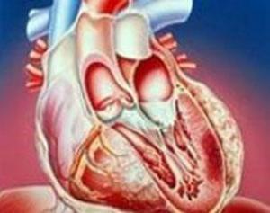 Давление крови в наших сосудах – вернейший показатель не только физического, но и душевного здоровья