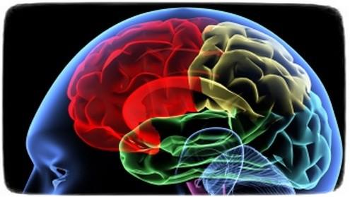 Дешевая и не агрессивная техника диагностики повреждений головного мозга