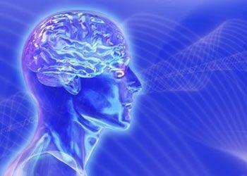 Для массовой подготовки лидеров изучают тайны мозга прославленных командиров