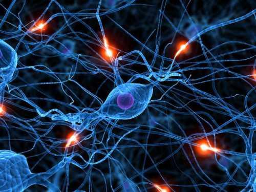 Новое лекарство от рака мозга