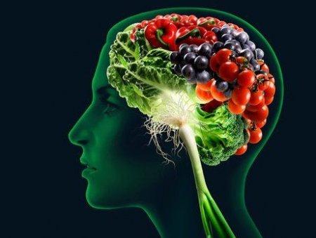 Чем питать мозг
