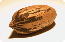 Орех-пекан помогает предотвратить риск развития рака и сердечно-сосудистых заболеваний