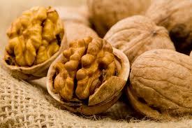 Влияние грецких орехов на сосудистые заболевания