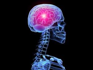 Изобретено лекарство от рака мозга