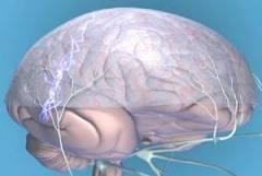 Лечебное питание. Рацион питания при мигрени