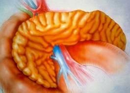 Панкреатит — причины появления, симптоматика, первая помощь при приступе панкриатита