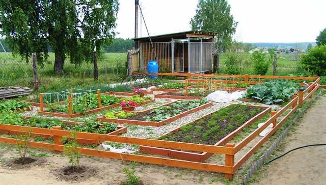 Минеральные удобрения – отличный урожай