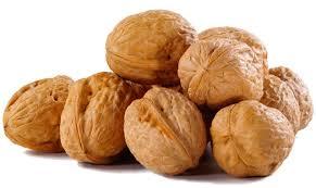 Грецкие орехи в компании «НАТХОЛДИНГ»