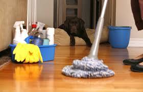 Чистота и порядок вашего дома